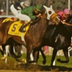 Breeders' Cup Countdown Presented By DRF Bets: Future Stars Friday Longshots