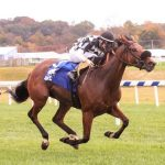 Maryland Million: Streaking Fiya Claims Turf Sprint; Epic Idea Stretch Out In Ladies