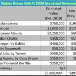 Zayat Stables Equine Liquidation Approaches Finish Line After Keeneland November Sale