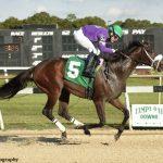 Shivaree, Heiressall Record FTBOA Stakes Victories At Tampa Bay Downs