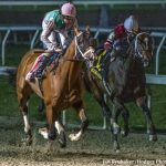 Triple Crown Weekend Prep Report Card: Upping The Ante For Kentucky Derby Points
